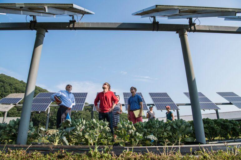 agroenergia-program-wsparcia-oze-dla-rolnikow-scaled