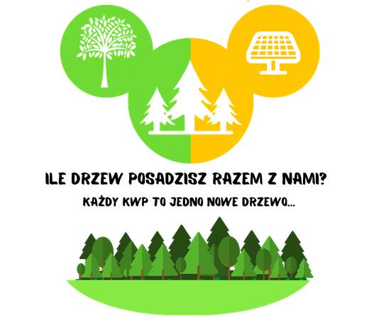 Enerji - akcja sadzenia drzew.