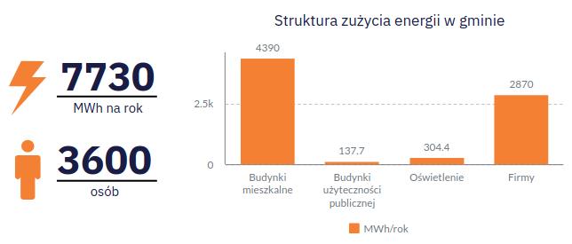 Struktura zużycia energii w gminie.