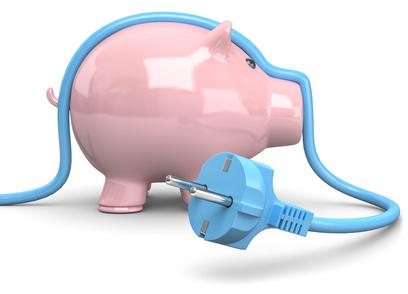 świnka z niebieskim kablem