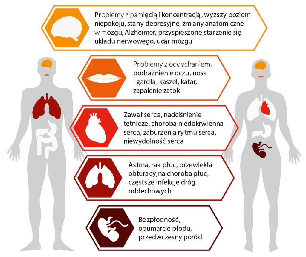 Wpływ zanieczyszczonego powietrza na zdrowie człowieka