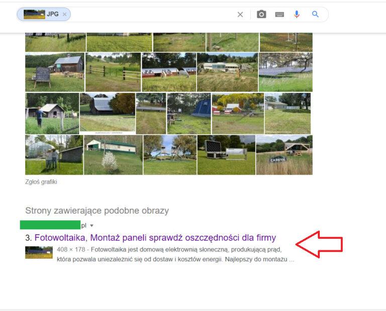 wyszukiwanie podobnych obrazów przez google (1)