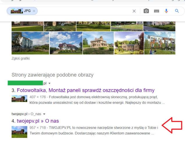 wyszukiwanie podobnych obrazów przez google (2)